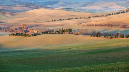 Farmhouse, cultivated grain Fields and Cypress Trees in Tuscany