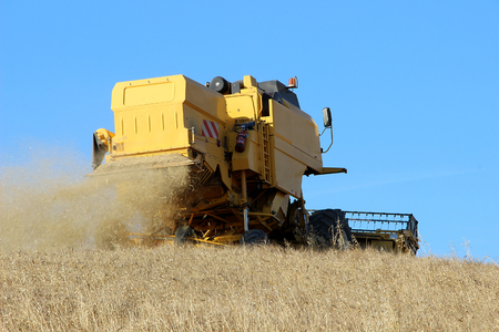 Harvest - Combine Harvester in Wheat Field Stock Photo