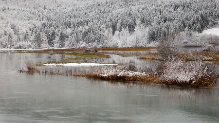 Winter landscape background with lake and snowy trees, Cerknisko lake, Slovenia, background for christmas cards, desktop