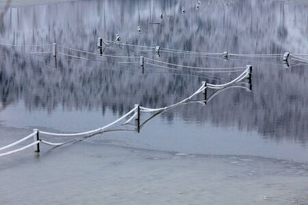 Winter water background with beautiful reflection of fences, stakes, ropes in a flooded snowy field, Planina, Slovenia