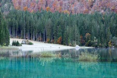Mountain emerald lake Fusine with hoarfrost, Lake Fusine, Italy