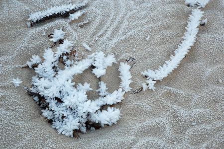 Ice crystals on sand - ice flowers - texture background