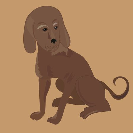 hound: The hunting hound dog, vector image Illustration