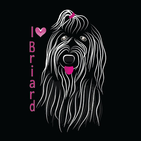 Dog breed Briard sketch vector graphics monochrome black and white with bow Illustration