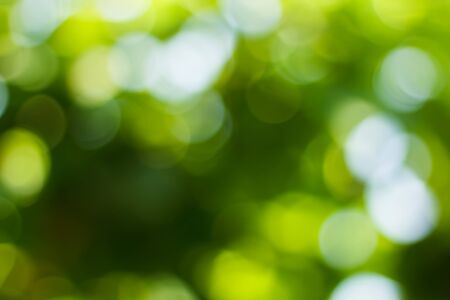 Natural green blurred and bokeh background,Abstract backgrounds. Imagens