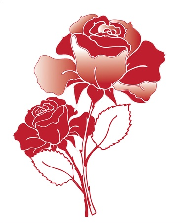 rose garden: Beautiful red roses, illustration