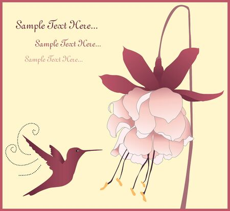 flower and bird card Vector