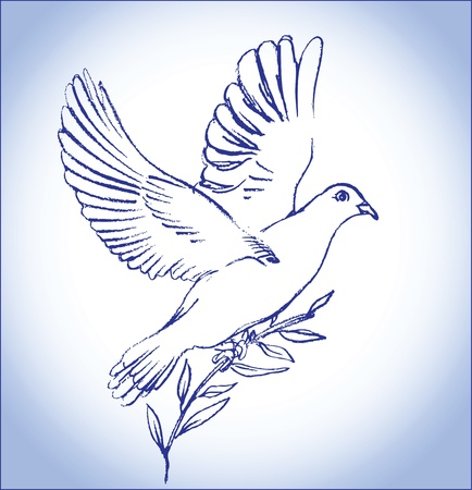 dove of peace: white peace dove Illustration