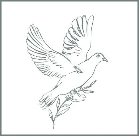 dove with olive branch: white peace dove Illustration