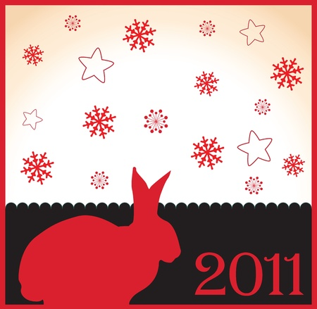 2011 Year of the Rabbit with Snowflakes Stock Vector - 19619673