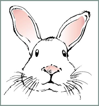 hand made: rabbit
