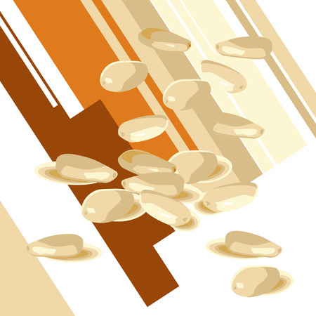 sesame seeds: sesame seeds