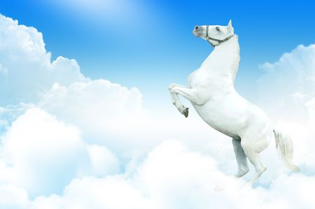 photomanipulation: white horse rearing in the sky, surrounded by clouds Stock Photo