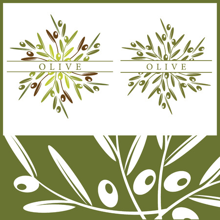 Olive Vetores