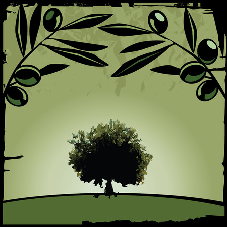 olive branch: Olive tree and branch Illustration