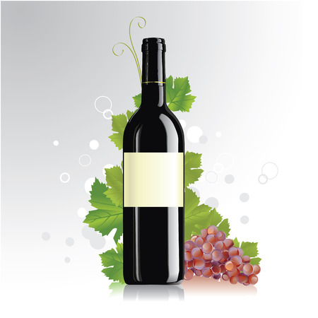 vvector illustration of wine bottle with blank labels Vector