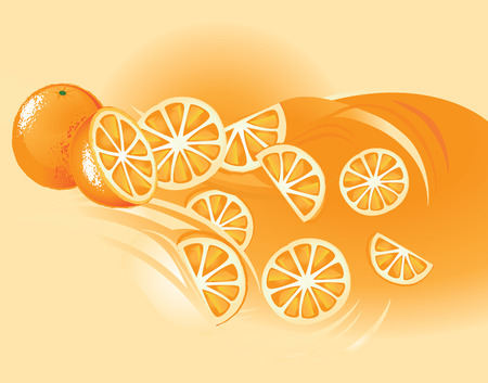 Orange, Fruit Vector