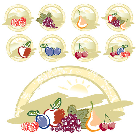 Retro mixed fruits collection Vector