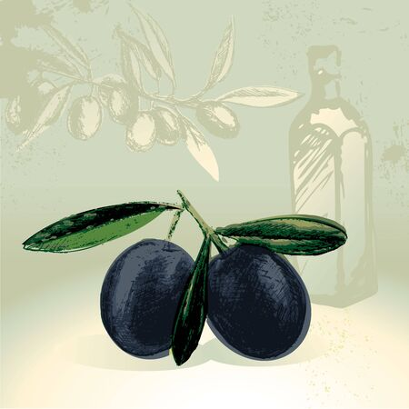 antioxidant: Olives with olive oil bottles graphics in the background Illustration