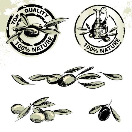 olijf: Labels voor olijf olie en olijven illustraties  Stock Illustratie