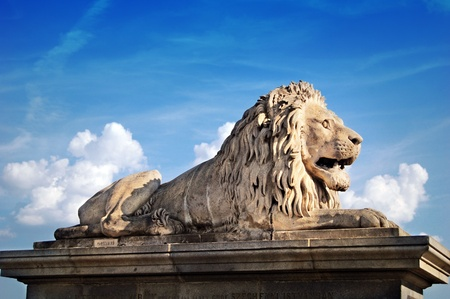 Lion statue in front of the Chain bridge in Budapest photo