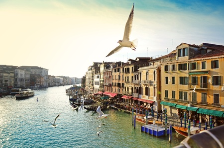 rialto bridge: Grand canal, view from Rialto bridge, Venice Stock Photo