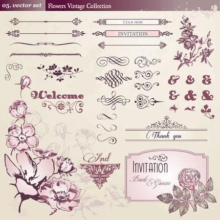 tipografia: Colecci�n de elementos vintage y flores  Vectores