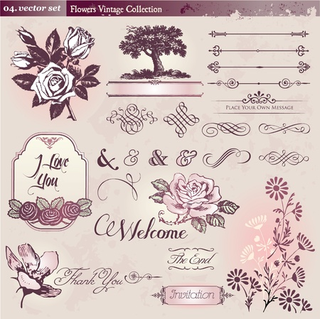 vintage scroll: Flowers and vintage elements collection