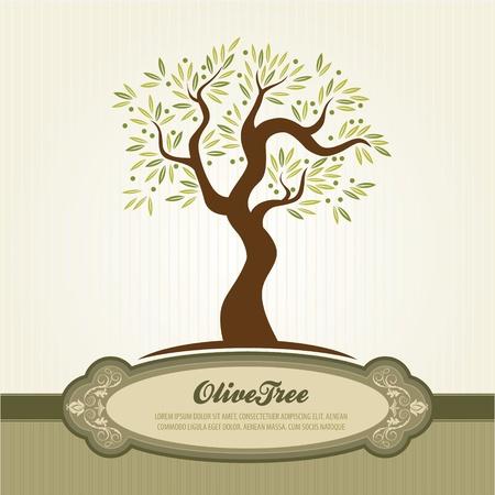 foglie ulivo: Vintage d'oliva Vettoriali