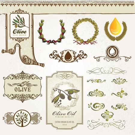 olive oil bottle: Collection of olive elements