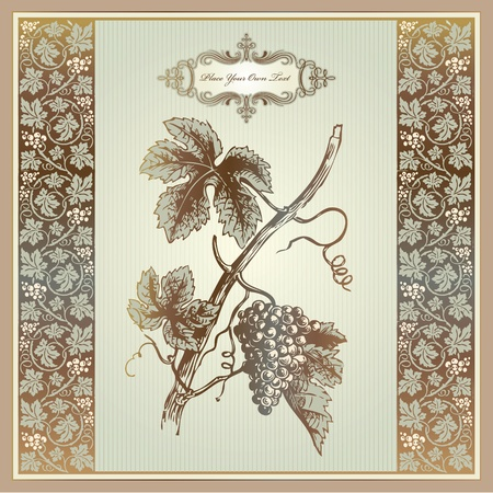 red grape: Vintage grape elements for wine label, menu, print material  Illustration