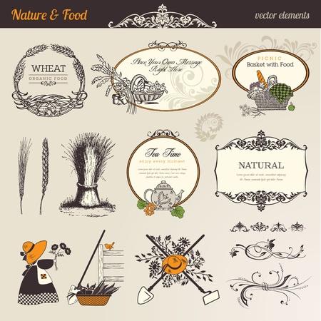 Nature & food vector elements Vector