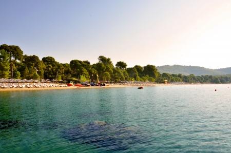 skiathos: Koukounaries beach, Skiathos, Greece