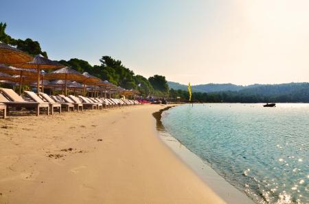 Koukounaries beach in Skiathos, Greece Standard-Bild