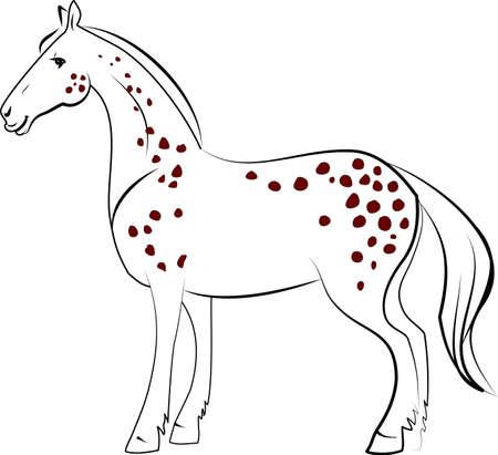 dapple horse: Dapple-horse