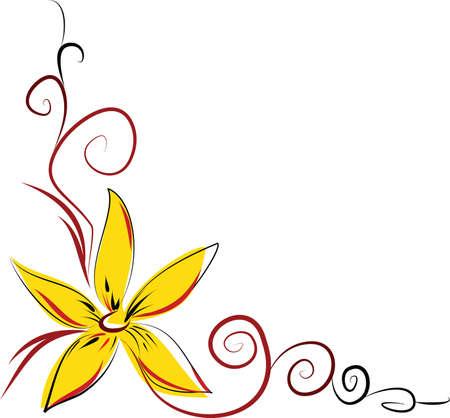 oranje lelie: Oranje lelie  Stock Illustratie