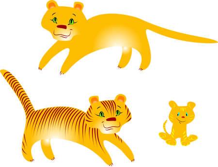 puma: Tigri e puma