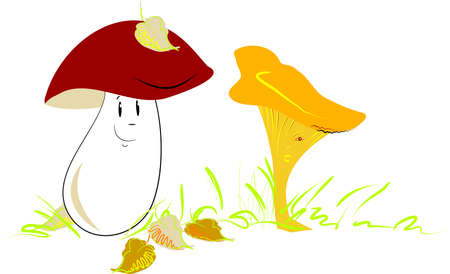A porcino in love with a chanterelle