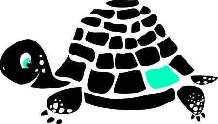 Black turtle Illustration