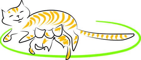 lactation: Nursing Cat  Illustration