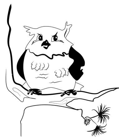 pinetree: Aspecto desconfiado