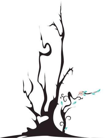 thorn bush: Flowering thorn