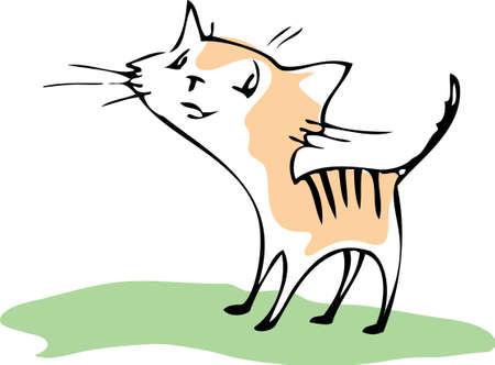 purring: Funny cat