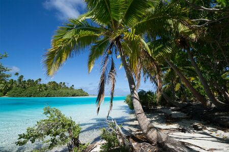 Polynesian beach in Aitutaki island, Cook Islands Reklamní fotografie