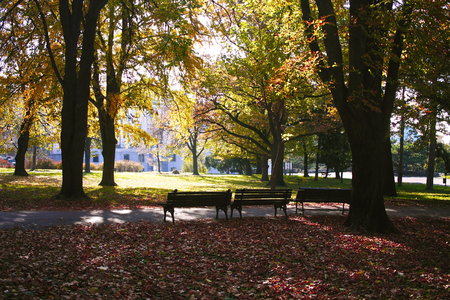 City park Karadjordjevic with benches in late autumn in Belgrade, Serbia.