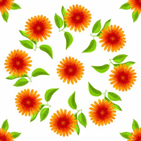 Seamless watercolor gerbera pattern on white background