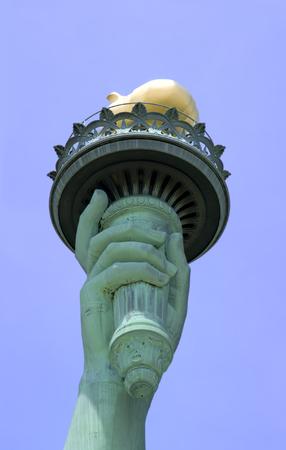 liberty island: Tenuto conto della Statua della Libert� della Torcia a Liberty Island a New York City.