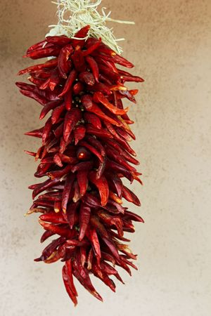 hot peppers: Hanging Strand of Red Chili Peppers in New Mexico