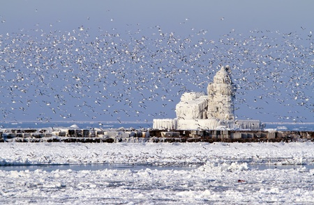 frozen lake: The Cleveland Harbor West Pierhead Lighthouse covered in ice. The lighthouse, built in 1911, guides ships from Lake Erie into the Port of Cleveland and the Cuyahoga River.