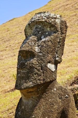 rapa nui: Moai en el Parque Nacional Rapa Nui en las laderas del volcán Rano Raruku en la Isla de Pascua, Chile.